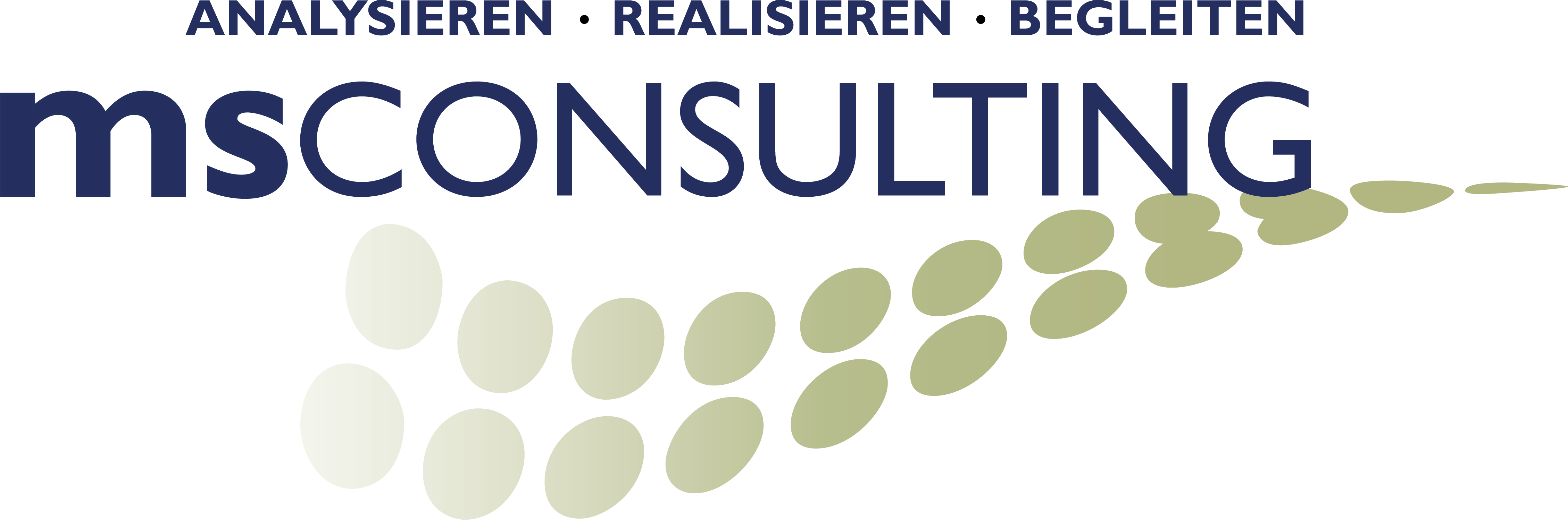 Logo MS Consulting