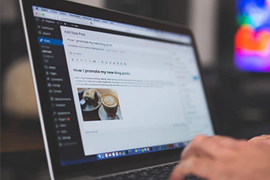 Ihr Wordpress Profi – Ihre Webagentur aus Freiburg